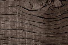 Naturholz-Hintergrund Sepia Stockfotografie