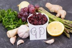 Naturkost für gesunde Nieren Enthaltene Vitamine nahrhaften Essens lizenzfreies stockfoto