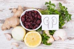 Naturkost für gesunde Nieren Nahrhaftes Essen als Quellvitamine lizenzfreies stockbild