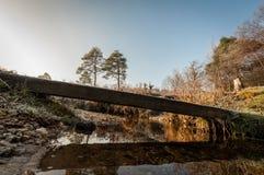 Naturlandschaft Stockbilder
