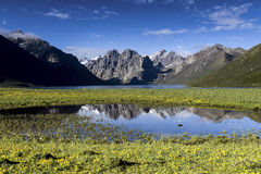 Naturlandschaft Lizenzfreies Stockfoto