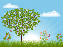 Naturlandschaft mit einem Baum Lizenzfreies Stockbild