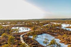 Naturlandschaft mit eisigem kaltem Sumpf mit eisigem Boden, Eis auf Sumpfsee, hölzernem Fußweg und schlechter Sumpfvegetation stockfotografie