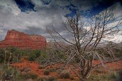 Naturlandschaft mit roten Felsen nahe Sedona, Arizona, USA Lizenzfreie Stockfotos