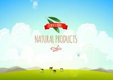 Naturlandschaftsillustration mit Bergen, Hügeln und Wolken Kühe auf einer grünen Wiese Konzept von frischem, natürlich Stockfoto