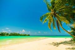 Naturlandskap: Den fantastiska sandiga tropiska stranden med kokosnötpalmträdet och kristallklart havsvatten på bakgrund slösar s Royaltyfri Fotografi