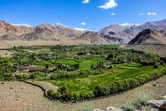 Naturlandskap med bergbakgrund längs huvudvägen i Leh Ladakh, Indien Arkivbild