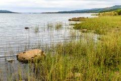 Naturlandskap med gräsförgrund Royaltyfri Bild