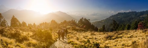 Naturlandskap med soluppgångeffekt hopp- och frihetsbegrepp Arkivfoton