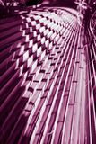 naturlig affisch dagleafen gömma i handflatan taget soligt closeup purpurt royaltyfria foton