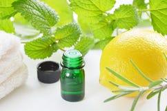 Naturlig aromatherapy med örter och citronen Fotografering för Bildbyråer
