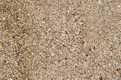 Naturlig bakgrund f?r sandstentextur Sand p? stranden som bakgrund Konkret textur f?r konstkr?m f?r bakgrund i svart royaltyfria foton