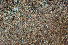 Naturlig bakgrund f?r sandstentextur Sand p? stranden som bakgrund Konkret textur f?r konstkr?m f?r bakgrund i svart arkivbilder