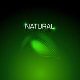 naturlig bakgrundsdesign Arkivbild