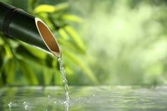 Naturlig bambuspringbrunn Arkivfoto
