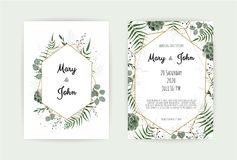 Naturlig botanisk bröllopinbjudanmall Kort för blom- design för vektor Geometrisk guld- ram, gräns med kopian vektor illustrationer