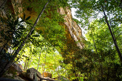naturlig bro Arkivfoton