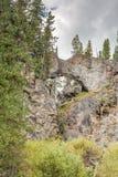 Naturlig broYellowstone nationalpark royaltyfri fotografi