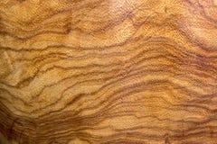 Naturlig brun trätextur för abstrakt bakgrund arkivbild