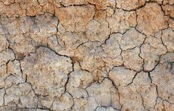 naturlig cracked jord för bakgrund lera Royaltyfri Fotografi