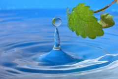 Naturlig droppe av vatten arkivfoto