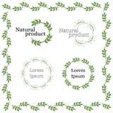 Naturlig eco-vänskapsmatch produktlogo filialgreen låter vara treen Royaltyfri Bild
