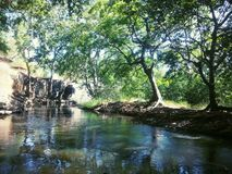 naturlig flod Arkivbilder