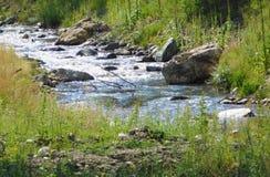 naturlig flod Royaltyfri Bild