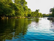Naturlig flod Barinas Venezuela Barinita arkivbild