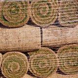 Naturlig grästorvagräsmatta i staplade rullar Royaltyfri Bild