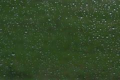 Naturlig grön bakgrund med vattendroppar av regn på exponeringsglas Arkivfoto