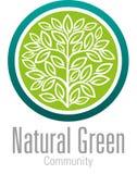 Naturlig grön gemenskap Arkivfoton