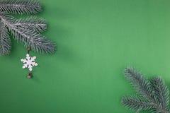 Naturlig grön julgran i snön på grön bakgrund lyckligt nytt år fotografering för bildbyråer
