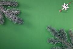 Naturlig grön julgran i snön på grön bakgrund lyckligt nytt år royaltyfria foton