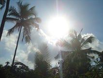 Naturlig himmel Royaltyfri Foto
