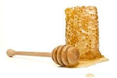 naturlig honungskaka Royaltyfria Bilder