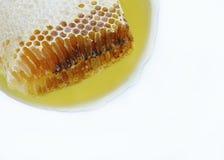 Naturlig honungskaka Royaltyfri Fotografi
