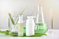 Naturlig hudomsorg, grön växt- organisk skönhetsproduktupptäckt på vetenskapslabbet arkivbild