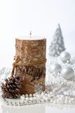 naturlig julgarnering Fotografering för Bildbyråer