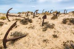 Naturlig kyrkogård av Marine Anchors på den Barril stranden, Portugal Royaltyfria Foton