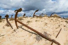 Naturlig kyrkogård av Marine Anchors på den Barril stranden, Portugal Fotografering för Bildbyråer