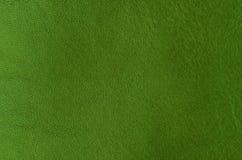 Naturlig läderbakgrund Royaltyfri Fotografi