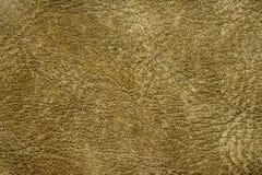 Naturlig lädertextur för gul gräsplan Arkivfoton