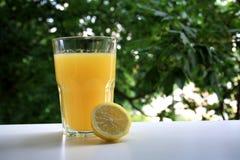 Naturlig lemonad i trädgården arkivbilder
