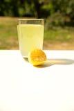Naturlig lemonad i trädgården Royaltyfri Fotografi