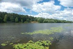 Naturlig liggande med floden, trees och skyen Arkivbilder