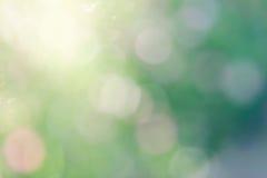 Naturlig ljus suddig bakgrund Arkivfoto