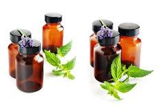 naturlig medicin Arkivbilder