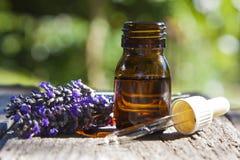 naturlig medicin Royaltyfria Bilder