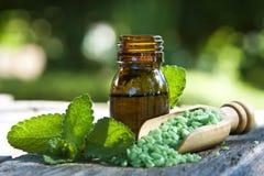naturlig medicin Arkivbild